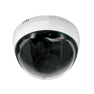 Wireless Dome IP Camera (JS-IPD100)