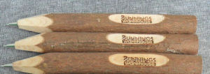 Nature Twig Wooden Ball Pen for with Stamp Logo pictures & photos
