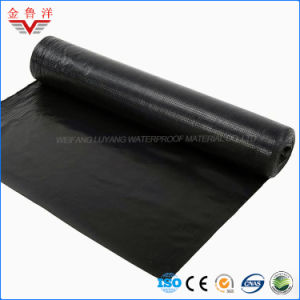 Torh-on Sbs Modified Bitumen Waterproofing Membrane with PE Film