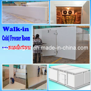 Walk in Freezer for Meat and Fish pictures & photos
