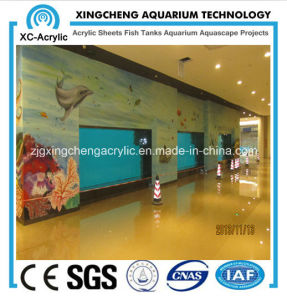 Acrylic Sheet for Aquarium/Inside The Walls of The Aquarium pictures & photos