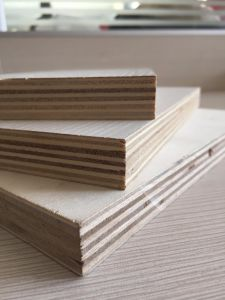Plywood AA/Ab/Bc- Packing and Commercial Plywood pictures & photos