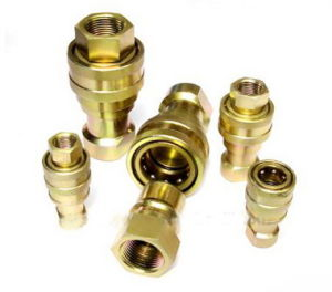 Brass Quick Coupler pictures & photos