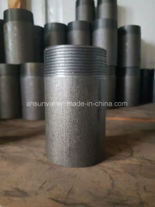 BS En 10241, DIN or JIS Steel Pipe Nipple pictures & photos