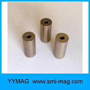 High Temperature Resistance Ring Shape SmCo Magnet pictures & photos
