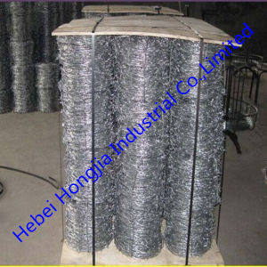 Stainless Steel Barbed Wire for Fence (factory)
