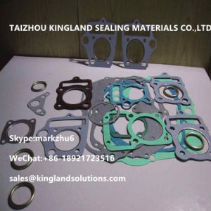 Custom Engine /Flange Paper Gasket pictures & photos