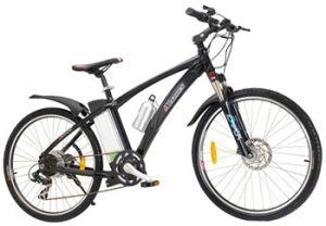 E Bike (XCF209) pictures & photos