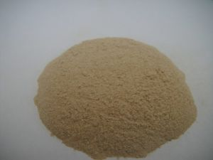 High Protein Fish Meal for Animal Feed with Good Quality