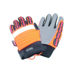 Riding Glove Sport Glove, Outside Glove