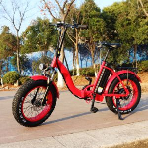 20inch Folding Fat Tire 500W E Bike pictures & photos