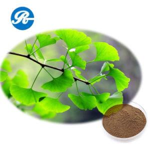 Ginkgo Biloba Extract) ---- (Improve Circulation Anti-Aging Ginkgo Biloba Extract pictures & photos