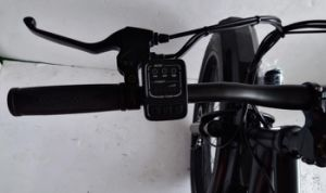 26 Mountain Electric Fat Cruiser Bicycle with Bottle Battery Case pictures & photos