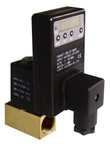 Digital Timer for Solenoid Valve --Xy-3800 pictures & photos