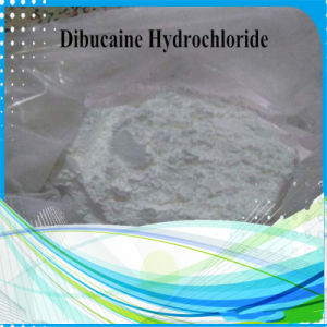99% Purity Dibucaine Hydrochloride Dibucaine HCl 61-12-1 No Side Efffect pictures & photos
