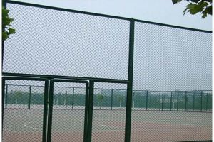 Low Carbon Steel Wire Chain Link Fence (sport)