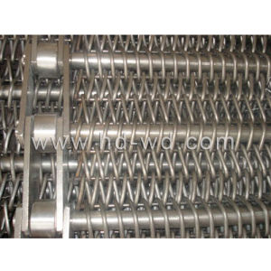 Conveyor Belt (Chain Driven Wire Mesh) pictures & photos