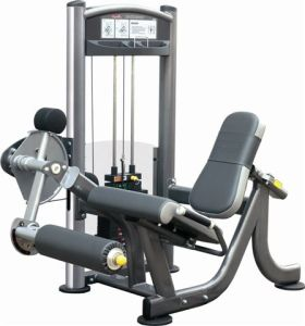 Leg Extension Strength Fitness Gym (IT 9005)