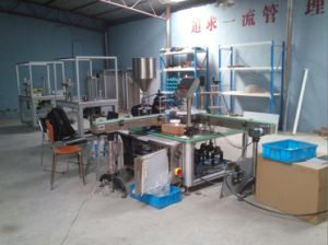 Nail Polish Filling & Capping Machine (Tn-30L01) pictures & photos
