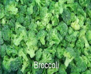 IQF Broccoli FDA, HACCP, Brc, ISO