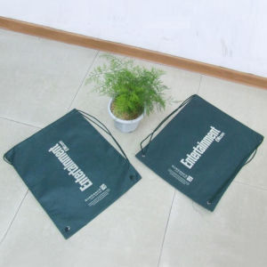 Non Woven Bag with Rope (Hr-Nwb113) pictures & photos
