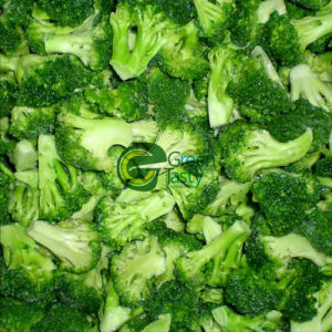 IQF Frozen Vegetables of Broccoli Florets (Chinese)