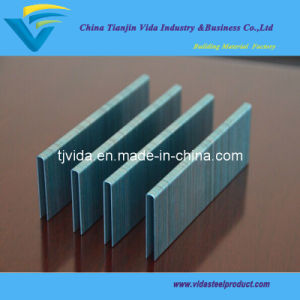 High Quality Galvanized Office Staple pictures & photos
