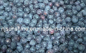 Blueberries (Cultivated)