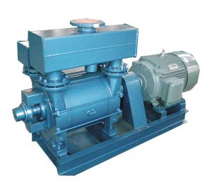 Water Ring Vacuum Pump and Compressor/ Vacuum Forming Pump (2BE1) pictures & photos