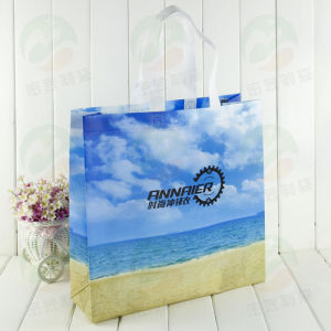 3D Nonwoven Advertising Bag (MYC-059) pictures & photos