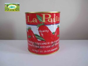 Canned Tomato Paste (800g)