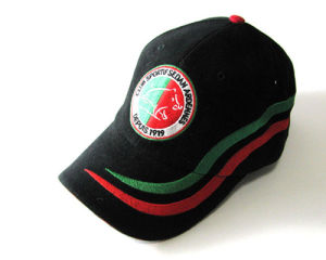 A06 Embroidered Baseball Cap pictures & photos