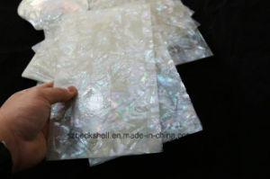 AAA Grade High Pressure White Mop Shell Lamination Sheet pictures & photos