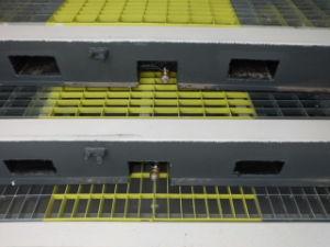 Dg Con Container (DG-8) pictures & photos