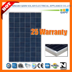240W 156*156 Poly -Crystalline Solar Panel pictures & photos