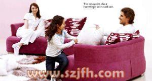 Sofa (QWS101)