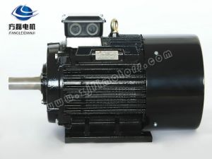 Yx3 Three Phase Cr800 Asynchronous Induction Motor pictures & photos
