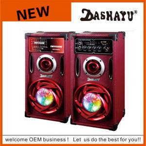 2.0 DJ Karaoke System PA Bluetooth Speaker (XD6-6013)