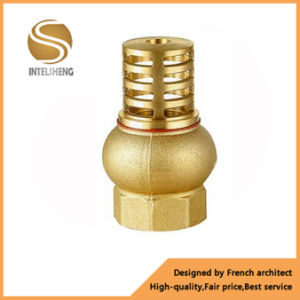 1 2 Inch Brass Core Vertical Check Valve pictures & photos