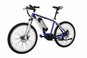 2017 Power Plus Electric Mountain Bike with Removable Lithium-Ion Battery, Electric Bicycle pictures & photos