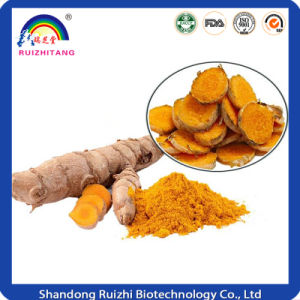 Tumeric Extract with 95%Curcumin pictures & photos
