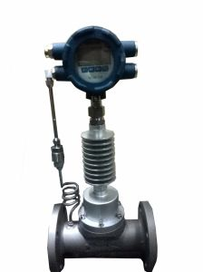 Steam Water Gas Flow Meter Lxw pictures & photos