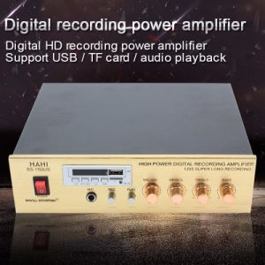 Multi-Function USB /TF DC Amplifier Digital HD Recording Power Amplifier (SS-150US)
