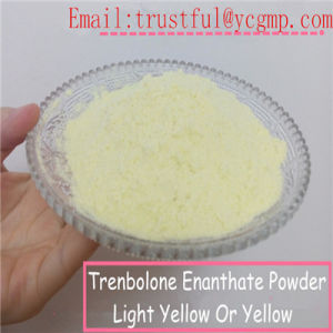 High Quality Powder Norethisterone CAS: 68-22-4 for Anti Estrogen pictures & photos