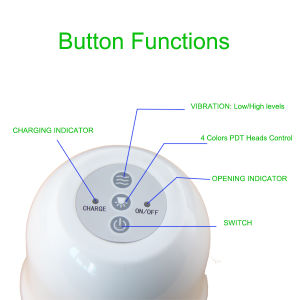 Lase Type Pore Wrinkle Remover, Skin Rejuvenation, Pigmentation Correctors Portable pictures & photos
