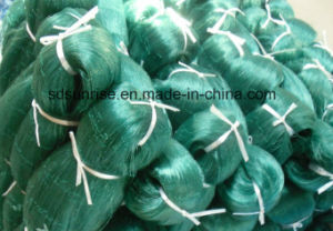 Nylon Monofilament Nets of Good Stretching Way pictures & photos