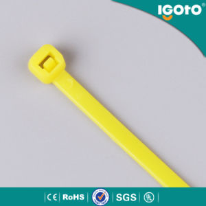 Free Samples UV Protection White Zip Cable Tie pictures & photos