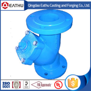 Spring Loaded Check Valve pictures & photos