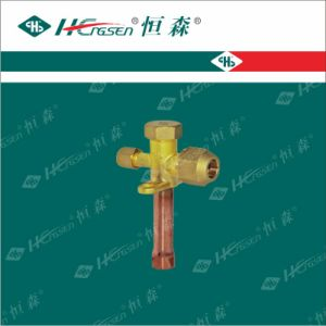 Over 20 Years Experience Factory Supply High Quality Level Air Conditioner Valve pictures & photos