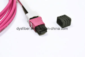 Om4 Erika Violet MPO/MTP 8/12/24 Core Trunk Multicore Fiber Optic Cables for Data Center pictures & photos